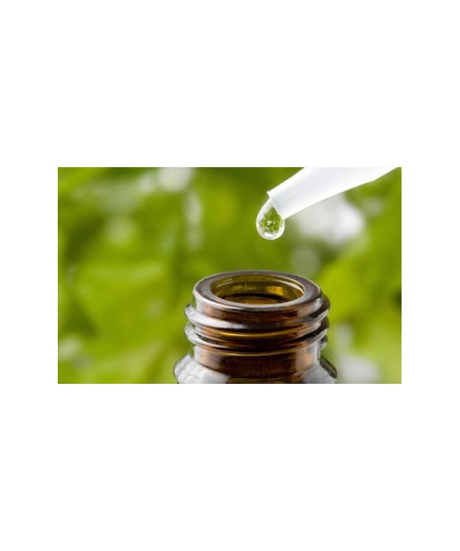 Aceite puro de árbol de té